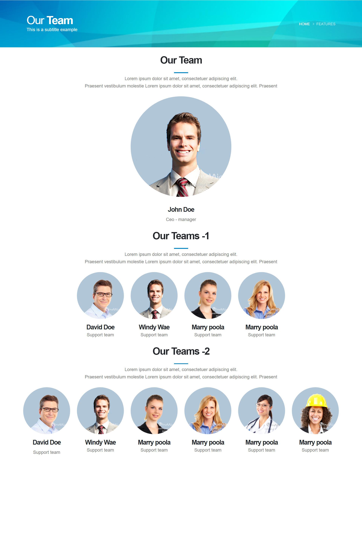 เว็บไซต์สำเร็จรูป สร้างเว็บไซต์ ด้วยเพจเลย์เอ้าท์-page layout-our team